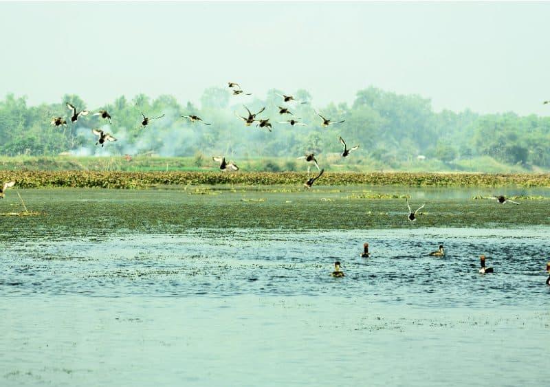 Read Wildlife Sanctuary